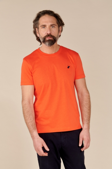 T-shirt New Basic col rond fiesta